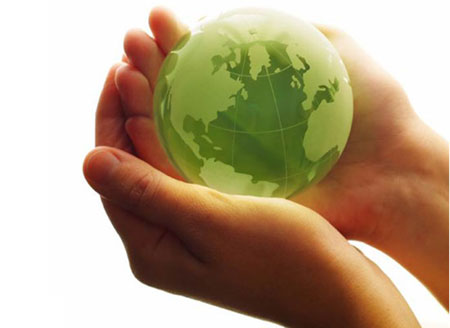Our Dedication to Green: The Steps We Have Taken to Save the Planet